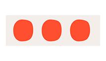 Logo Rapp